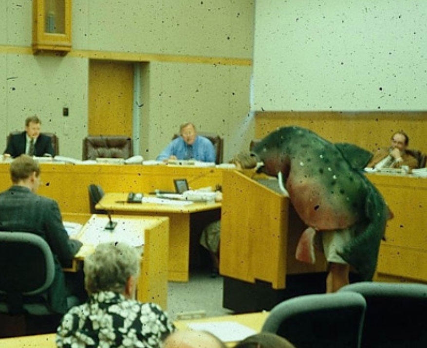 Sorax Ghost of Coho Salmon in court